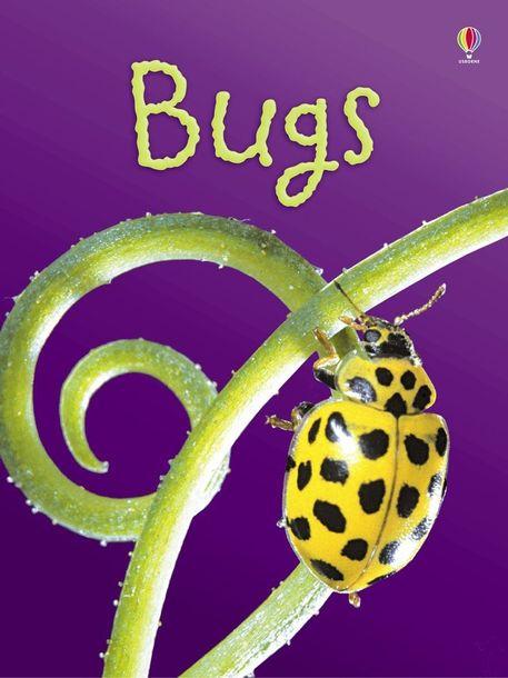 Bugs (1)