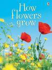 How Flowers Grow (1)
